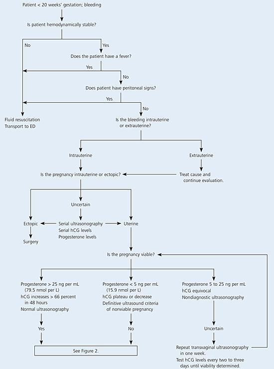 doxycycline antibiotics